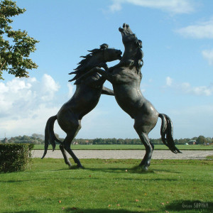 "Bronze sculpture ""Fighting Stallions"""