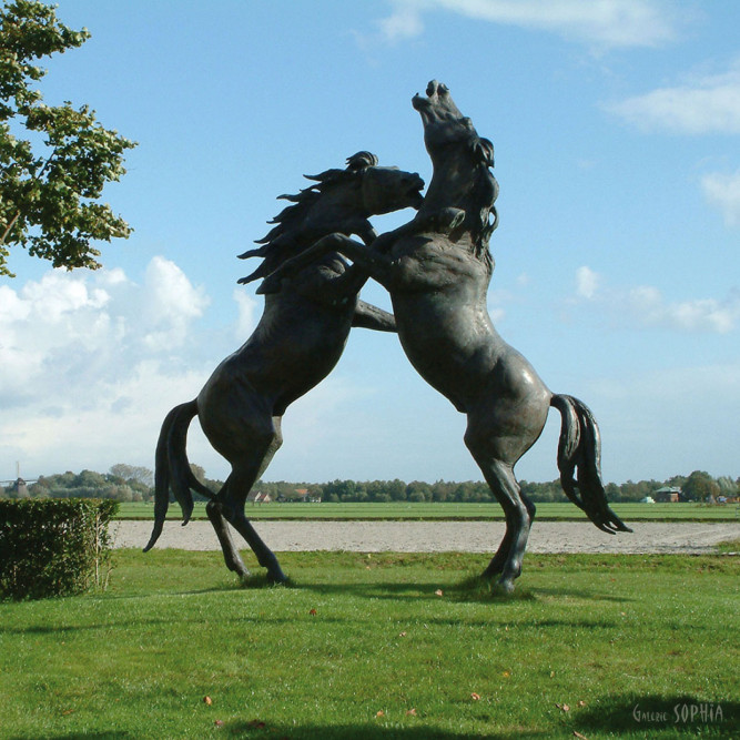 Fighting Stallions - Gabriel Sterk